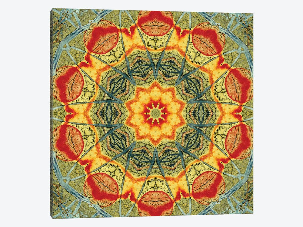 Indo Mandala II by LuAnn Ostergaard 1-piece Canvas Artwork