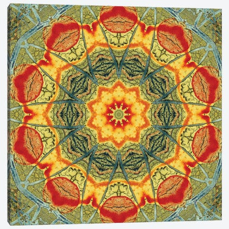 Indo Mandala II Canvas Print #OST53} by LuAnn Ostergaard Canvas Art