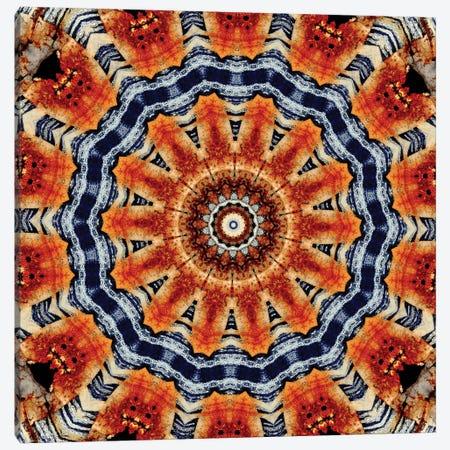 Kuren Mandala Canvas Print #OST65} by LuAnn Ostergaard Canvas Artwork