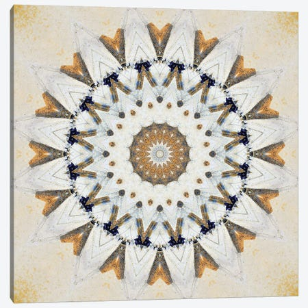 Kurimu Mandala I Canvas Print #OST66} by LuAnn Ostergaard Canvas Artwork