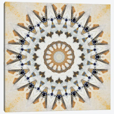 Kurimu Mandala II Canvas Print #OST67} by LuAnn Ostergaard Canvas Artwork