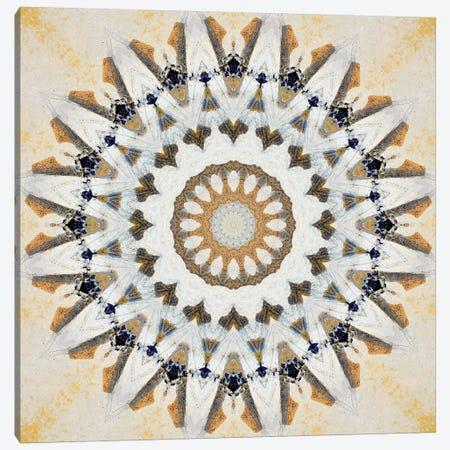 Kurimu Mandala II Canvas Print #OST67} by LuAnn Ostergaard Canvas Artwork