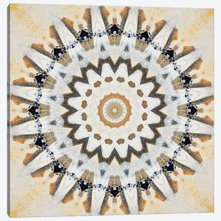 Kurimu Mandala III Canvas Print #OST68} by LuAnn Ostergaard Canvas Print