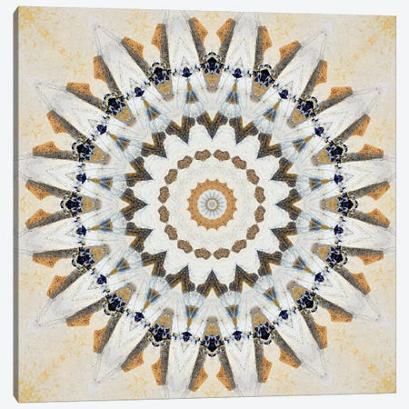 Kurimu Mandala IV Canvas Print #OST69} by LuAnn Ostergaard Canvas Print