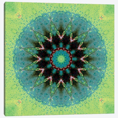 Baio Mandala Canvas Print #OST6} by LuAnn Ostergaard Canvas Artwork