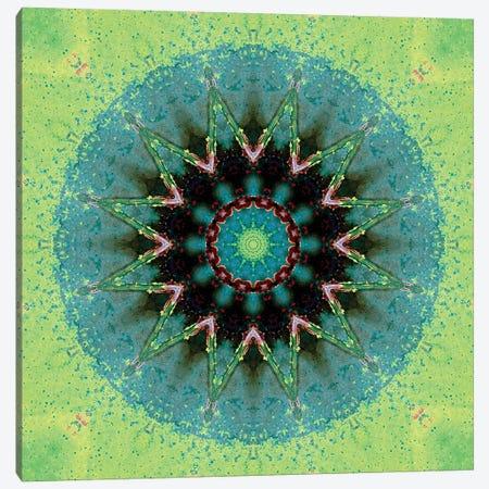 Baio Mandala 3-Piece Canvas #OST6} by LuAnn Ostergaard Canvas Artwork