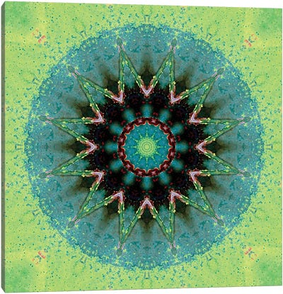 Baio Mandala Canvas Art Print