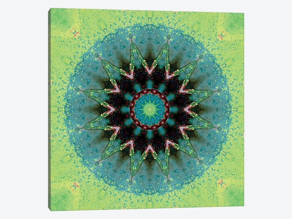Baio Mandala by LuAnn Ostergaard 1-piece Canvas Print