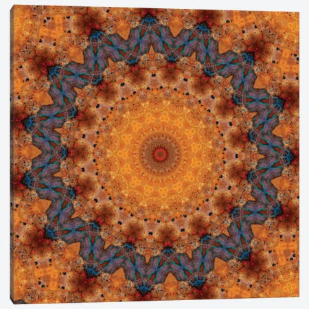 Momo Mandala Canvas Print #OST72} by LuAnn Ostergaard Canvas Wall Art