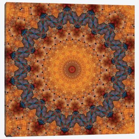 Momo Mandala Canvas Print #OST72} by LuAnn Ostergaard Canvas Wall Art