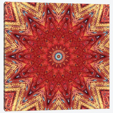Nansei Mandala I Canvas Print #OST76} by LuAnn Ostergaard Canvas Art Print