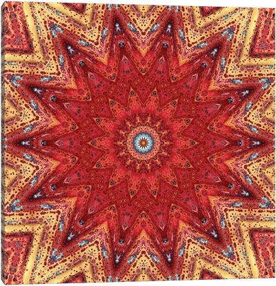 Nansei Mandala I Canvas Art Print