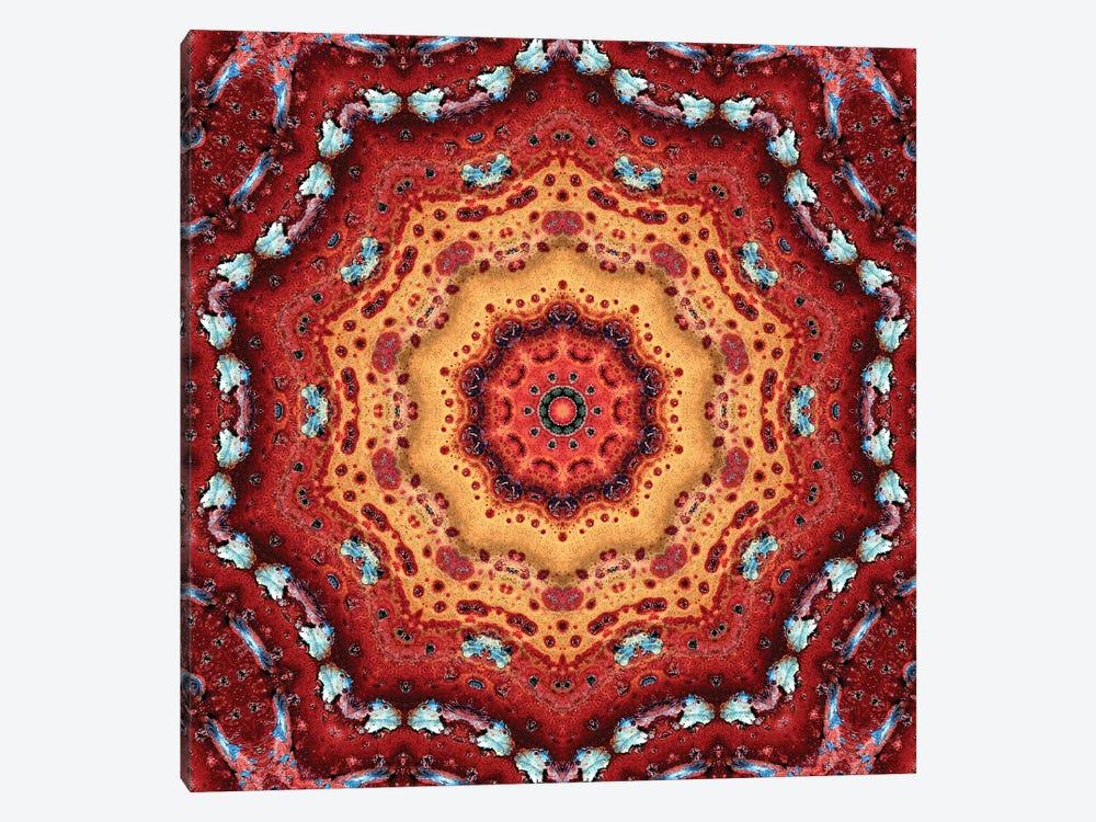 Nansei Mandala II by LuAnn Ostergaard 1-piece Canvas Artwork