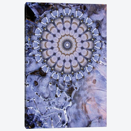Caligo Mandala Canvas Print #OST8} by LuAnn Ostergaard Canvas Art Print