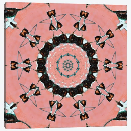 Samon Mandala I Canvas Print #OST99} by LuAnn Ostergaard Canvas Wall Art