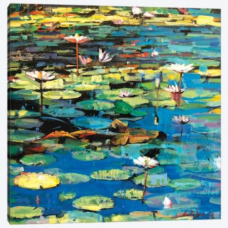 Waterlilies II Canvas Print #OTL10} by Marco Ortolan Art Print