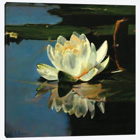 Waterlilies IV Canvas Print #OTL24} by Marco Ortolan Canvas Art Print