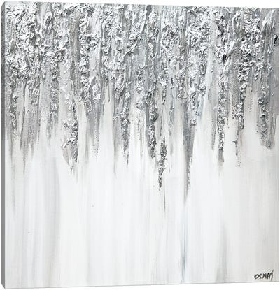 Silver Drops Of Jupiter Canvas Art Print