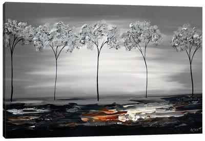 Silver River Canvas Art Print