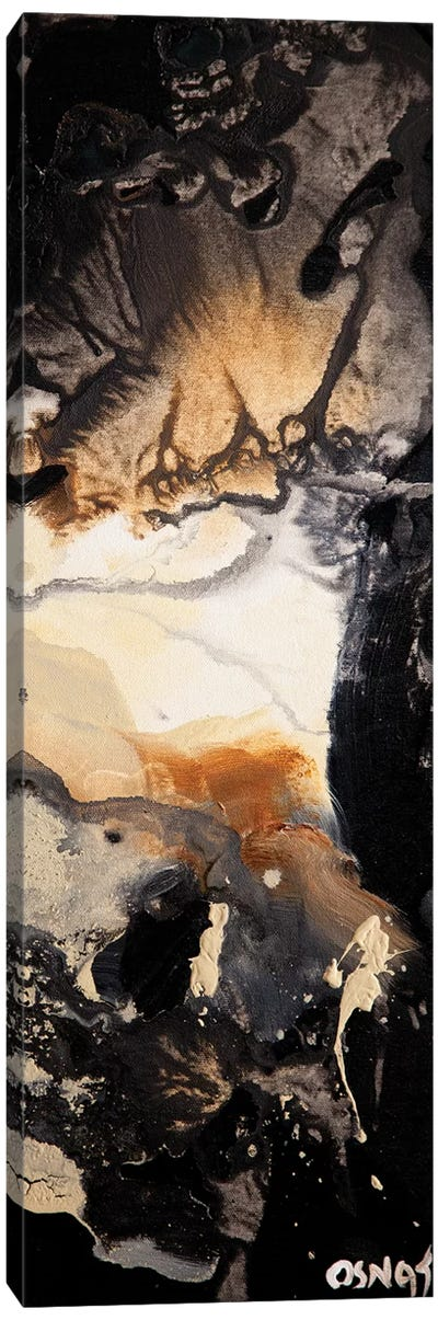 Starry Night Panel I Canvas Art Print
