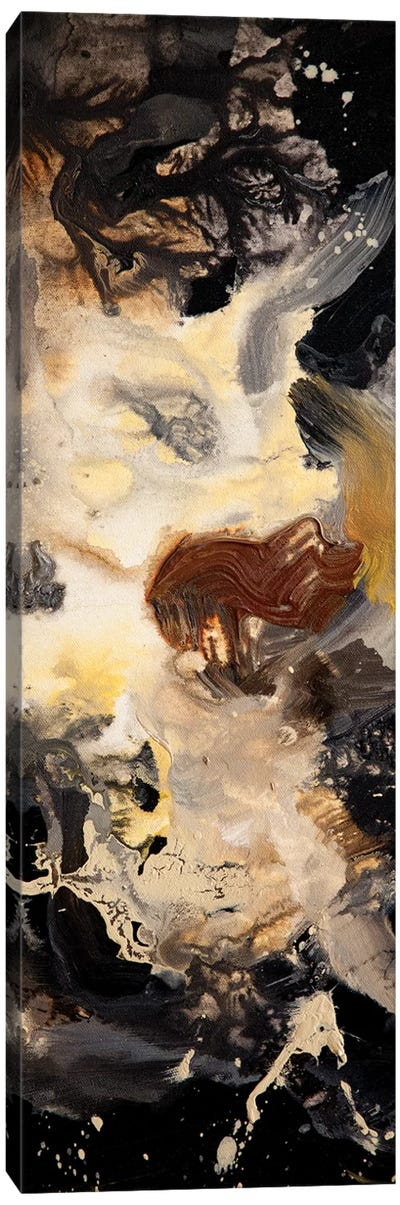 Starry Night Panel II Canvas Art Print