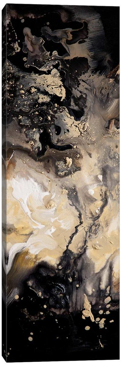Starry Night Panel IV Canvas Art Print