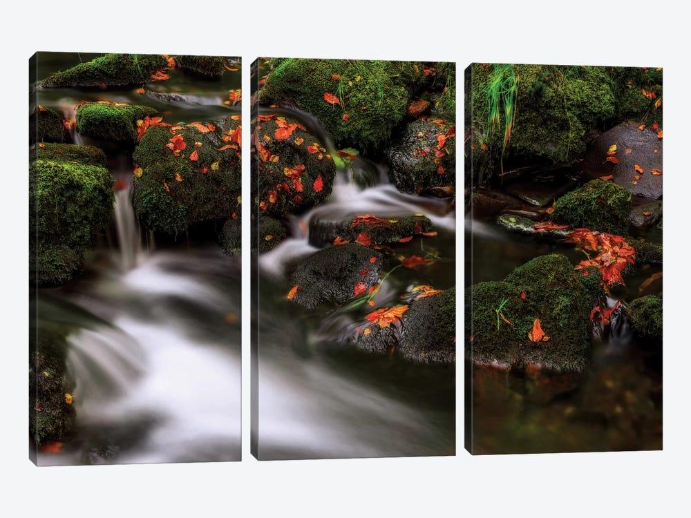 Autumn Melodies by Yavuz Pancareken 3-piece Canvas Print
