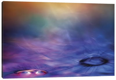 Only My Soul Canvas Print #OXM106