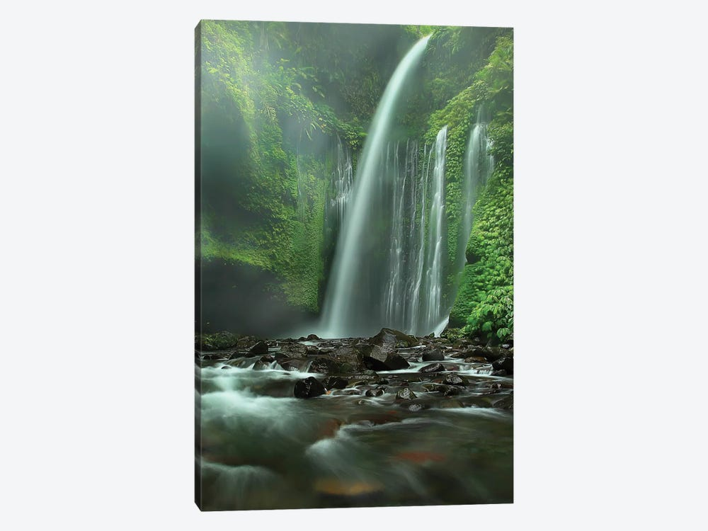 Tiu Kelep by Adhi Prayoga 1-piece Canvas Wall Art