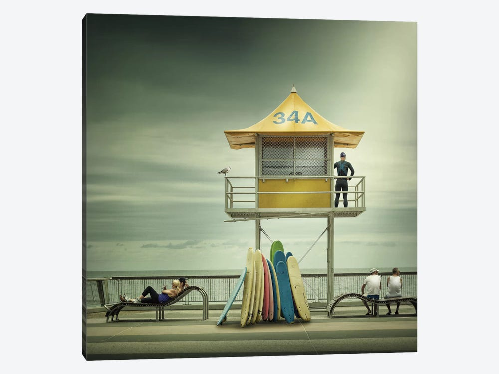 The Life Guard by Adrian Donoghue 1-piece Art Print