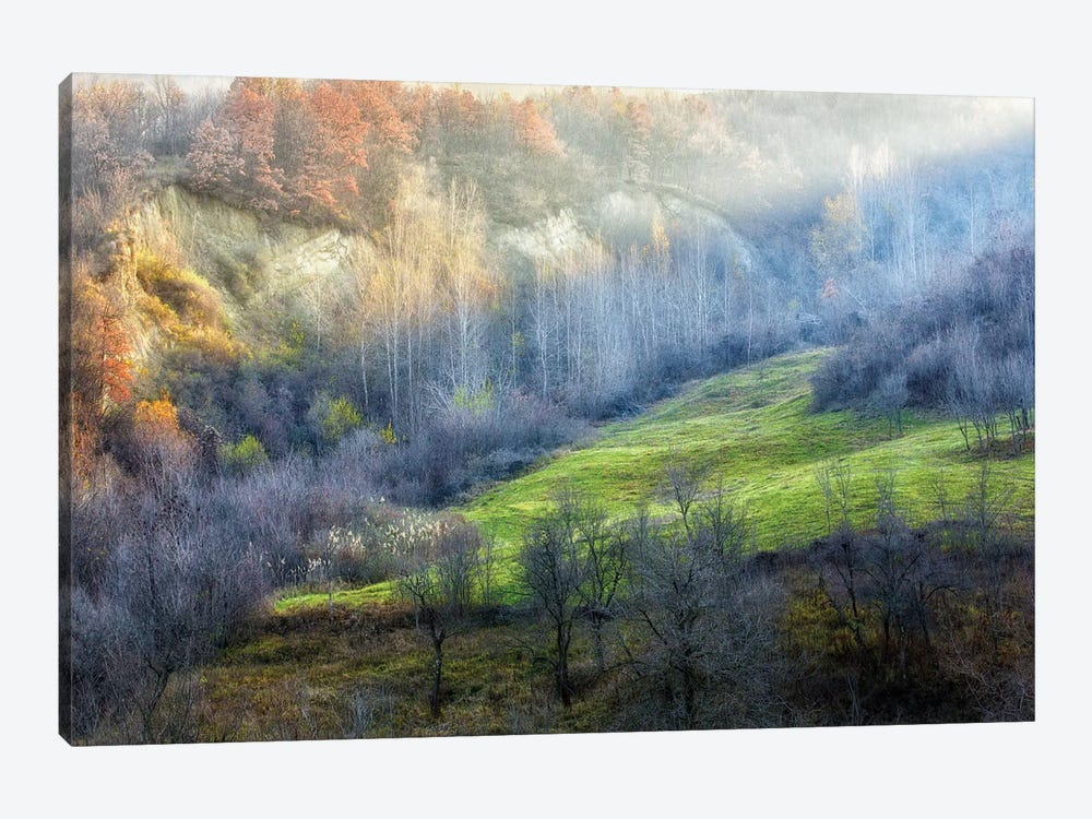November Colors by Adrian Popan 1-piece Canvas Artwork