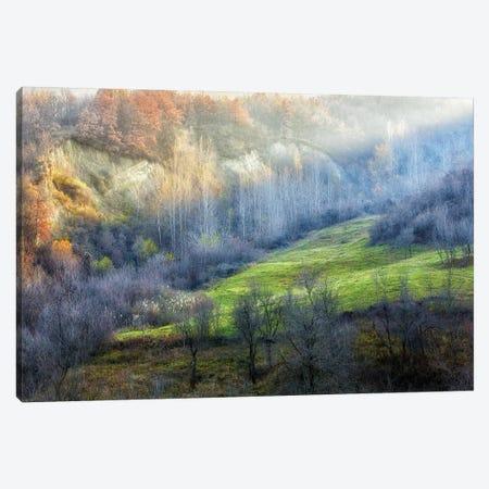 November Colors 3-Piece Canvas #OXM1074} by Adrian Popan Canvas Artwork