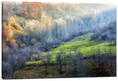 November Colors Canvas Art Print