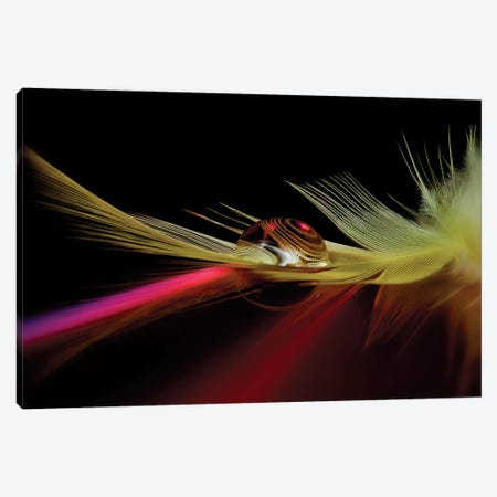 Colors In The Drop Canvas Print #OXM1078} by Aida Ianeva Canvas Print