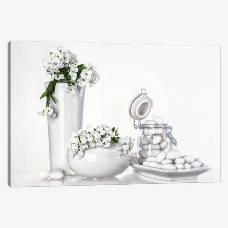 Porcelain Canvas Print #OXM1080} by Aida Ianeva Canvas Wall Art