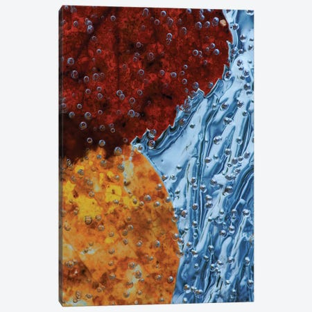 Leaves Frozen In Ice Canvas Print #OXM1112} by Allan Wallberg Canvas Wall Art