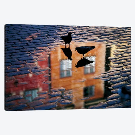 Pigeons Canvas Print #OXM1113} by Allan Wallberg Canvas Artwork