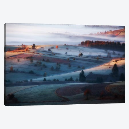 Mist Canvas Print #OXM1134} by Amir Bajrich Canvas Print