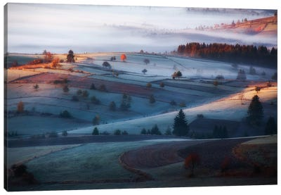 Mist Canvas Art Print