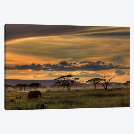 Africa Canvas Print #OXM1135} by Amnon Eichelberg Canvas Art Print