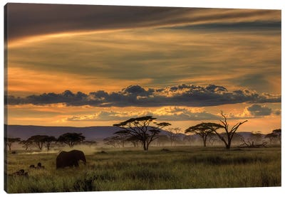 Africa Canvas Art Print