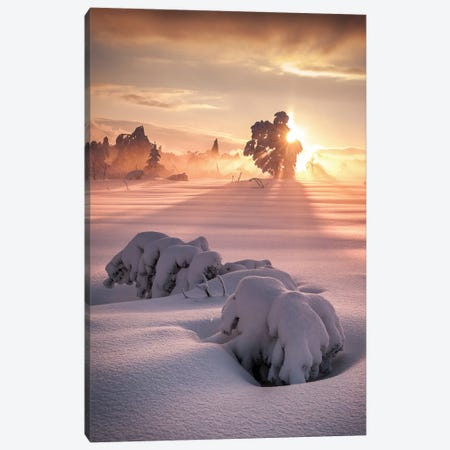 After The Storm Canvas Print #OXM1145} by Andreas Wonisch Canvas Art