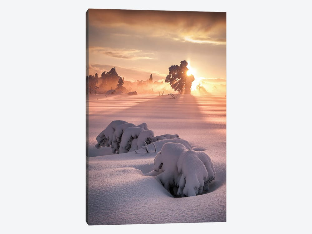 After The Storm by Andreas Wonisch 1-piece Art Print