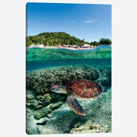 Along Shore Canvas Print #OXM1149} by Andrey Narchuk Art Print
