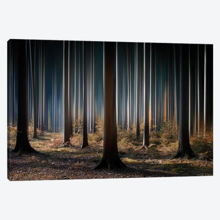 Mystic Wood Canvas Print #OXM114} by Carsten Meyerdierks Canvas Print