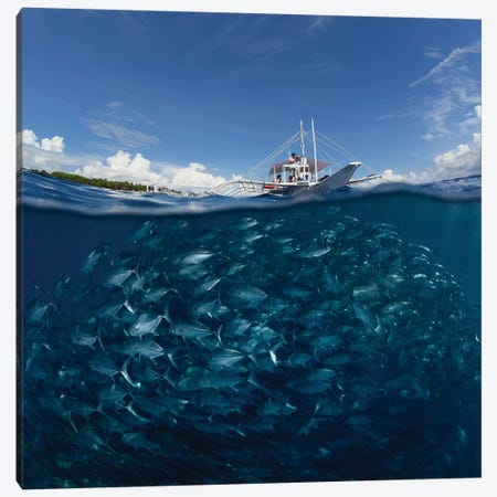 Go Diving? Canvas Print #OXM1151} by Andrey Narchuk Canvas Art