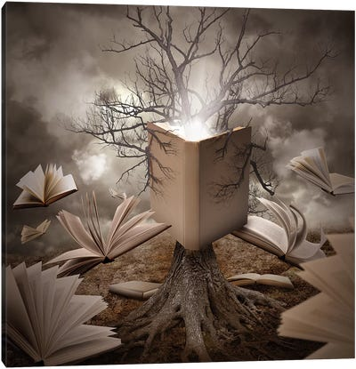 Old Tree Reading A Story Book Canvas Art Print