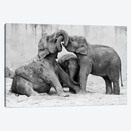 Manage A Trois Canvas Print #OXM1173} by Antje Wenner-Braun Canvas Wall Art