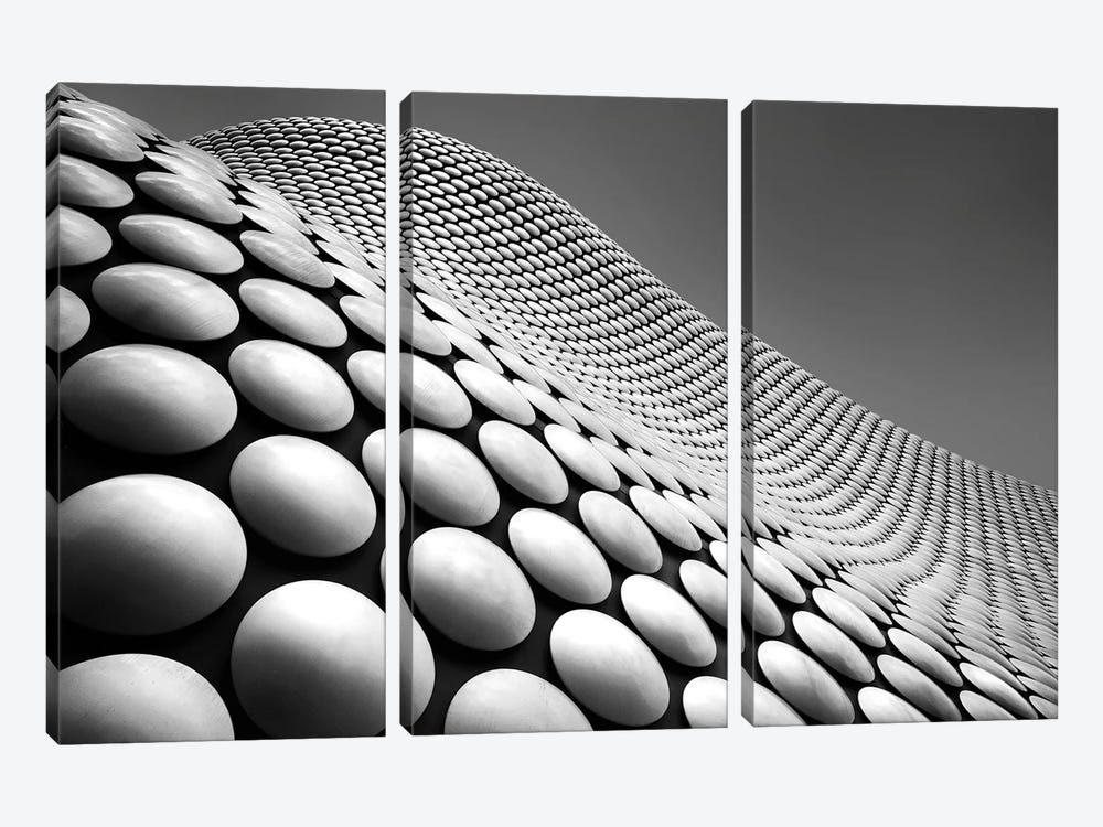 Curve by Linda Wride 3-piece Canvas Wall Art