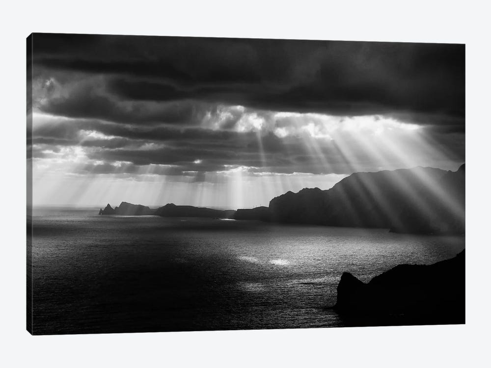 Morning Rays 1-piece Art Print